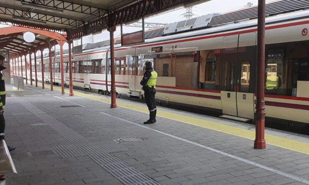La seguridad privada colaborará con el ejercito para regular la afluencia en las instalaciones de RENFE