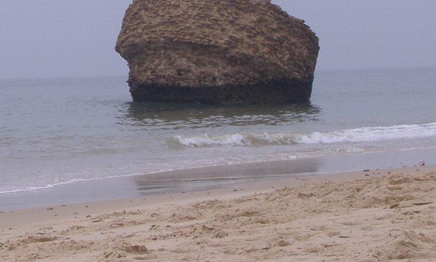 Las administraciones locales dan la espalda a la seguridad privada en el control de acceso a las playas